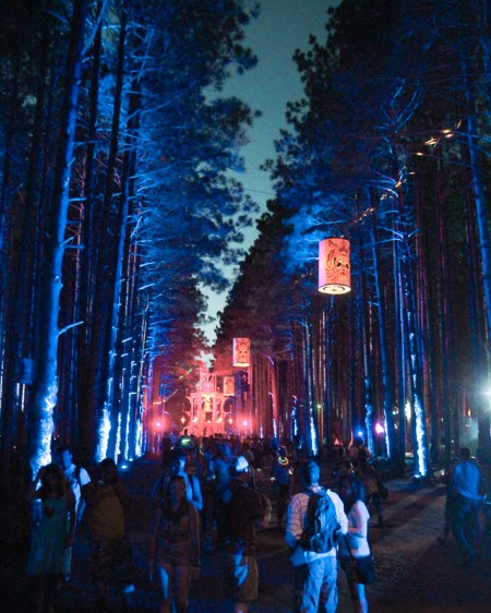 The Sherwood Forest at night during day two of Electric Forest festival.